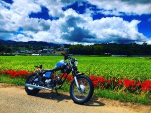 バイク買取 熊本市 みのまるバイク 高価買取